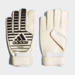 Soccer Classic Training Gloves