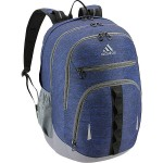 Prime IV Laptop Backpack