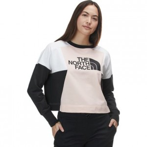 Train N Logo Crop Pullover - Womens
