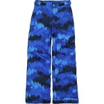 Ice Slope II Pant - Boys