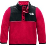 Glacier 1/4-Snap Fleece Jacket - Toddler Boys