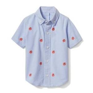 Hibiscus Oxford Shirt