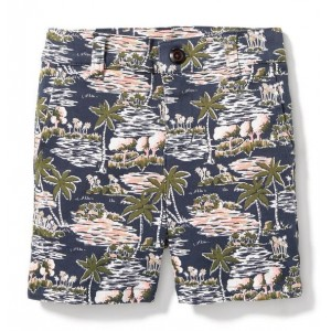 Island Getaway Short