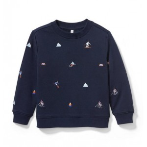 Ski Icon Sweatshirt