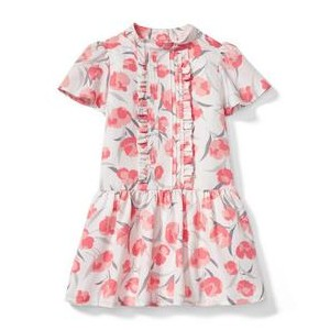 Poppy Dropwaist Dress
