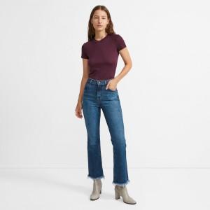 J Brand Julia High Rise Flare Jean