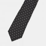 Silk Polka Dot Roadster Tie