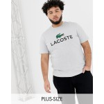 Lacoste large croc logo t-shirt in grey