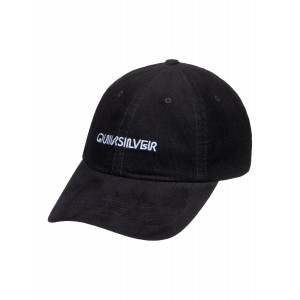 Labeled Dad Hat