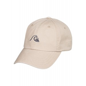 Rad Bad Dad Hat