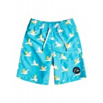 Boys 2-7 Cockatoo 14 Swim Shorts