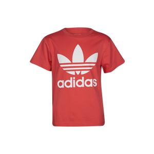 adidas Originals Trefoil T-Shirt - Boys Grade School