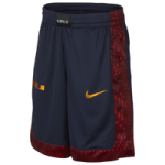 Nike LeBron Graphic Shorts - Boys Grade School