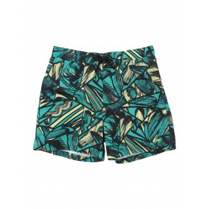 SPEEDO SPEEDO Swim shorts 47201834SH