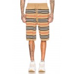 Icon Stripe Bermuda Shorts