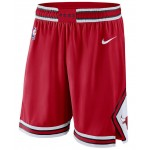 Mens Chicago Bulls Icon Swingman Shorts
