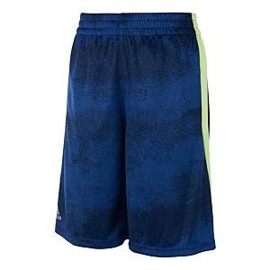 Little Boys Fusion Shorts
