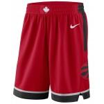 Mens Toronto Raptors Icon Swingman Shorts