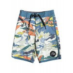 Boys 2-7 Highline Feelin Fine 14 Boardshorts
