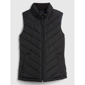 Warmest Puffer Vest