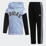 Hooded Jacket and Joggers Set