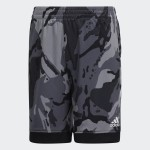 AEROREADY Core Camo Shorts