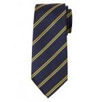 Double Stripe Silk Nanotex® Tie