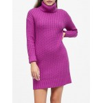 Petite Chunky Turtleneck Sweater Dress