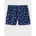 Americana Pinup Boxers
