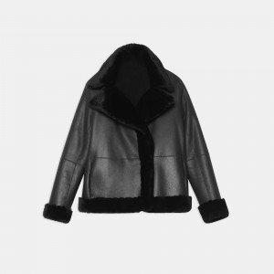 Clairene Moto Jacket in Polished Shearling