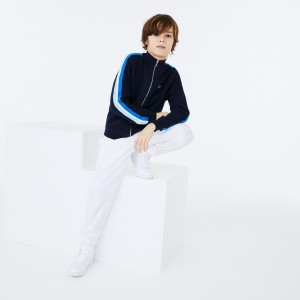 Boys Stand-Up Collar Lacoste Embroidered Zippered Cotton Jacket