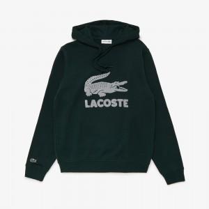 Mens Hooded Fleece Sweatshirt With Printed Logo