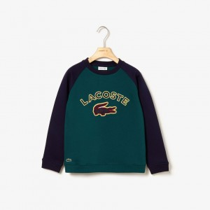 Boys Croc Patch Color-Block Fleece Sweatshirt