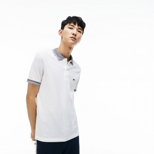 Mens Regular Fit Piped Pique Polo