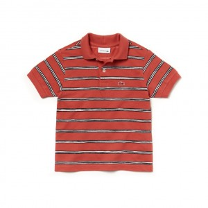 Boys Striped Cotton Mini Pique Polo