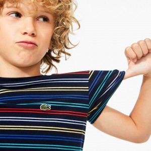 Boy's Striped Cotton Crewneck T-Shirt