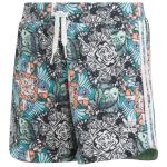adidas Originals Jungle Animal Print Shorts - Girls' Grade School