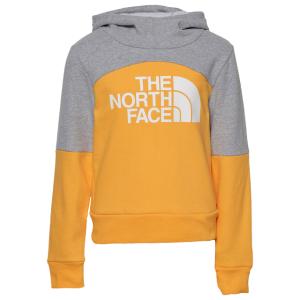 The North Face Metro Logo Pullover Hoodie - Girls' Grade School