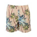 STUSSY - Swim shorts