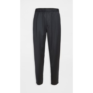 Walter Wool Pleated Trousers