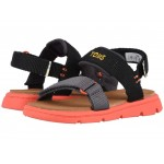 Ray (Toddler/Little Kid) Black Solid Webbing