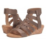 Calia Gladiator Bronze