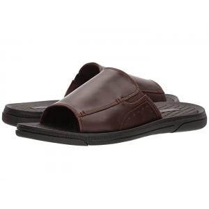 Pacey Sandal B Brown