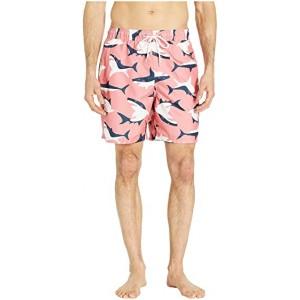 Shark Swim Shorts Coral