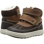 PBZGT 23726 (Toddler) Brown