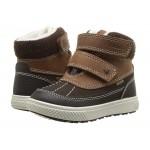 PBZGT 23726 (Toddler) Brown