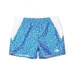 The North Face Kids Class V Water Shorts (Little Kidsu002FBig Kids) Clear Lake Blue Flashito Print