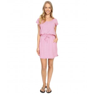 Short Sleeve Impulse Dress Raspberry Rose Stripe (Prior Season)