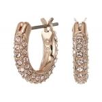 Stone Pierced Earrings