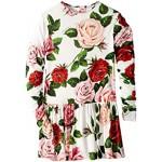 Long Sleeve Rose Dress (Big Kids)